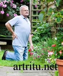 Причины артрита позвоночника