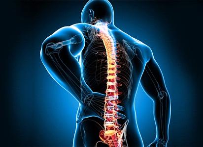 Боль в спине поможет устранить Хондрокрем