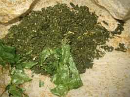 Чай из листьев клена