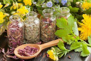 Лечение артроза и артрита травами