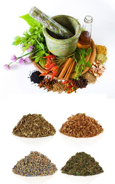 Лечение суставов лекарственными травами