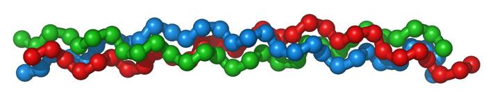 Нить ДНК, научные исследования