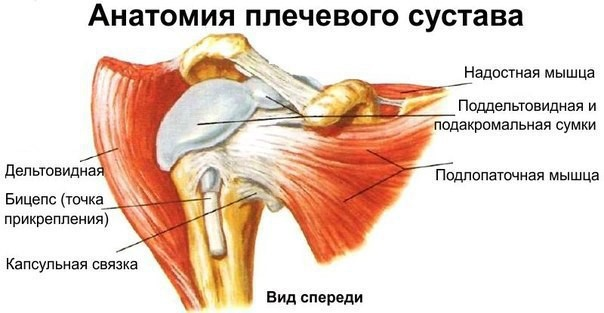 Боль в области плечевых суставах больв мышцах наложения повязки на локтевой сустав