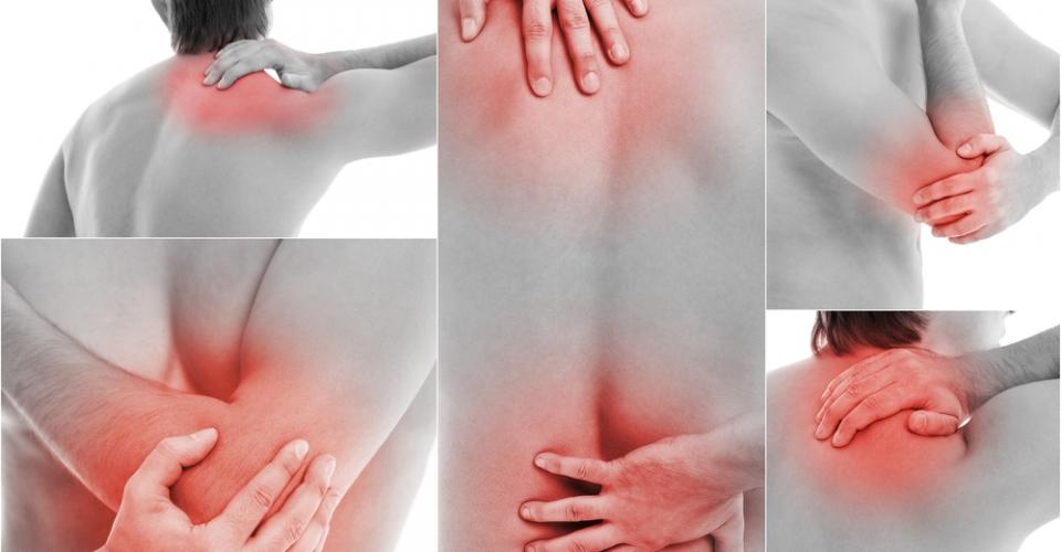 Причина болей в суставах и мышцах