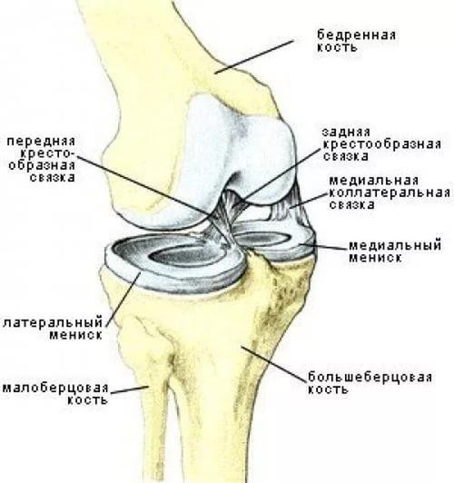 Как восстановить суставы