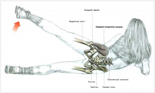 Упражнения для отводящей мышцы