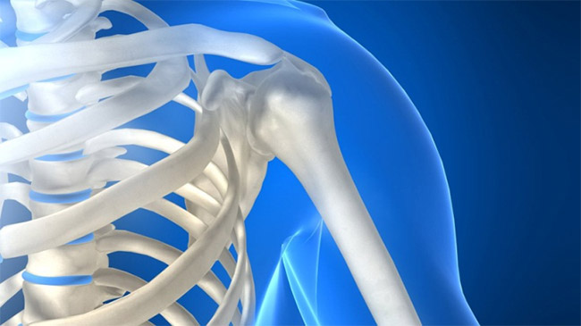 Изображение - Состав плечевого сустава plechevoj-sustav