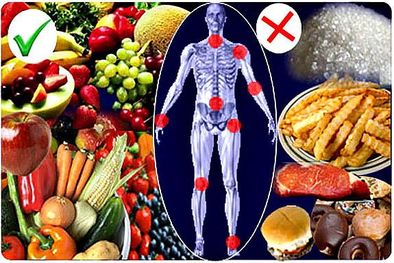Рекомендуемое питание