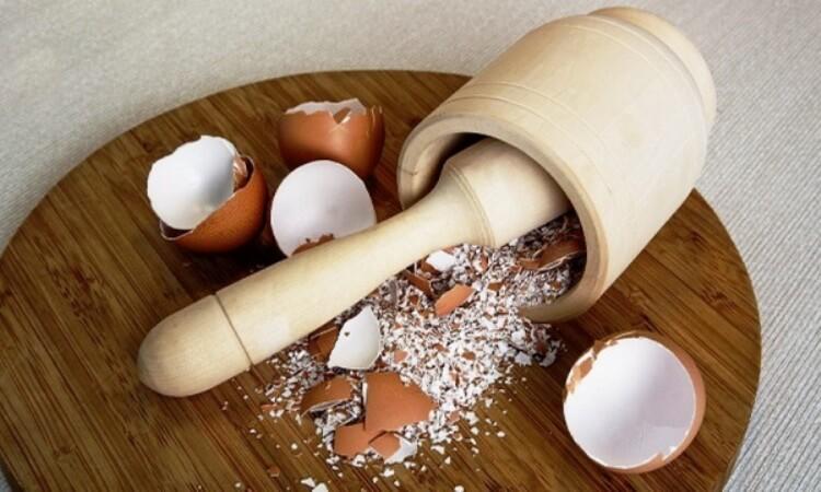 Яичная скорлупа против остеопороза