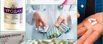 Медикаментозное лечение мочевой кислоты