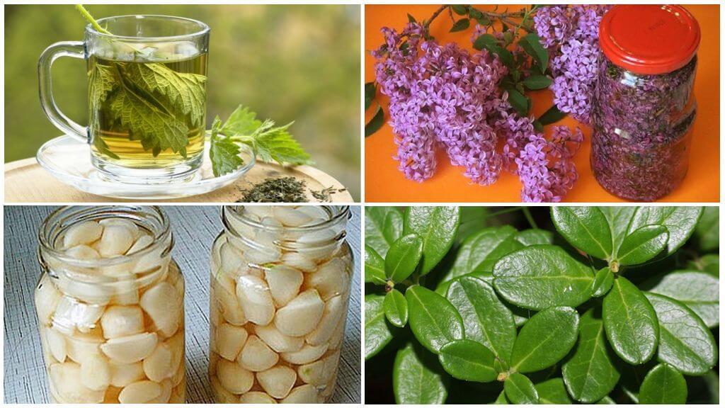 Народные способы очистки организма от мочевой кислоты